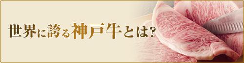 世界に誇る神戸牛とは?